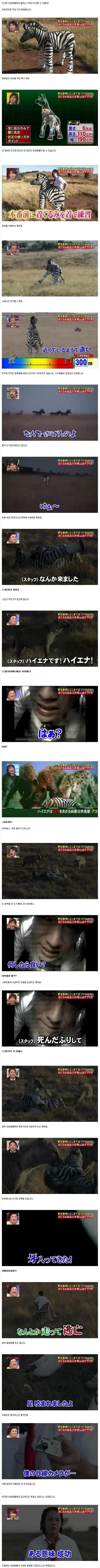 ブログ 韓国 の 反応