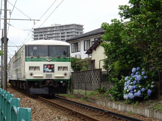 DSC00273-640.jpg