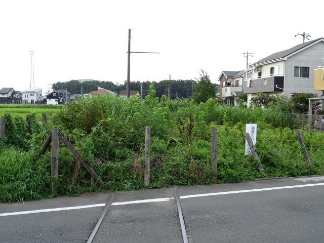DSC01546.jpg