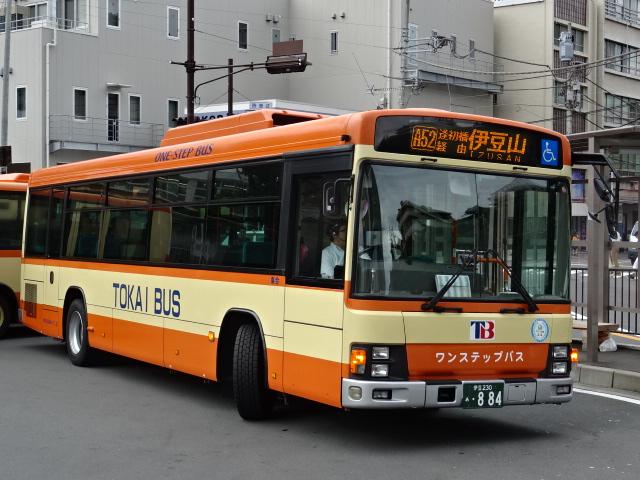 DSC02521.jpg