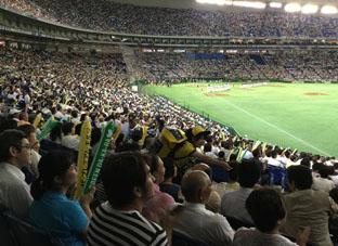 201681東京ドームモルツ球団1