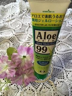 aloe1.jpg