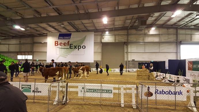 20160514_ニュージーランドFeilding Beef Expo1