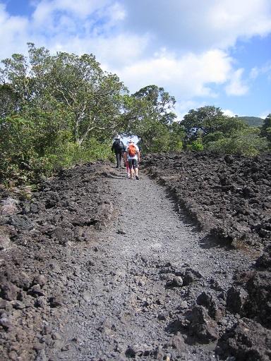 ニュージーランド・ランギトト島-4