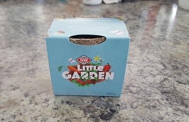 ニュージーランドのリトル・ガーデン-1