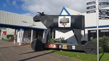 ニュージーランドのブルズ-1