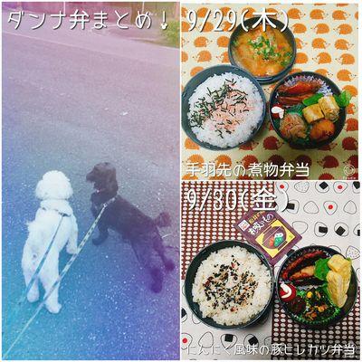 ダンナ弁当まとめ(9/26~30)と北海道フェア2