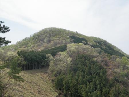 160409姥穴山(桐生市) (4)s