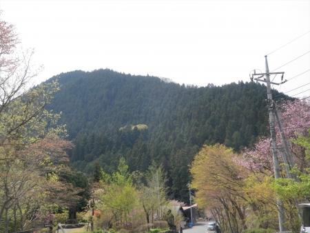160416神川町神山 (12)s