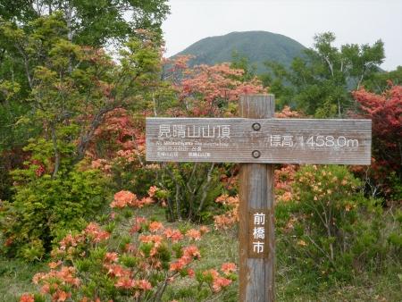 160604五輪尾根~鈴ヶ岳 (28)s