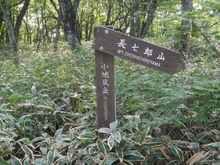 160612長七郎山~オトギの森 (4)s