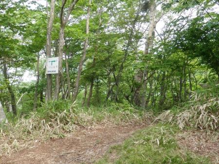 160612長七郎山~オトギの森 (25)s