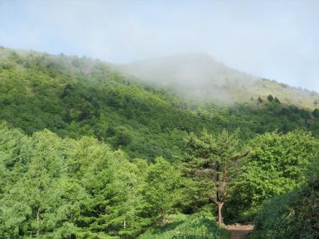 160710烏帽子岳~湯ノ丸山 (4)s