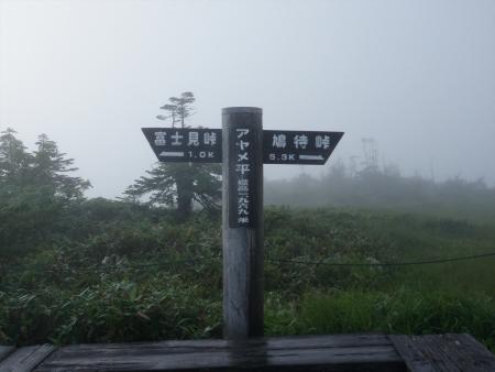 160729鳩待峠~富士見峠~一ノ瀬 (12)s