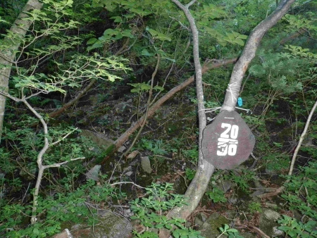 160806安達太良山 (8)s