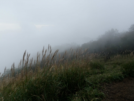 160917黒檜山~地蔵岳 (14)s