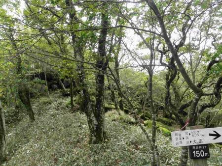 160917黒檜山~地蔵岳 (15)s