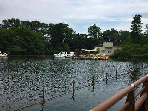 井之頭公園1