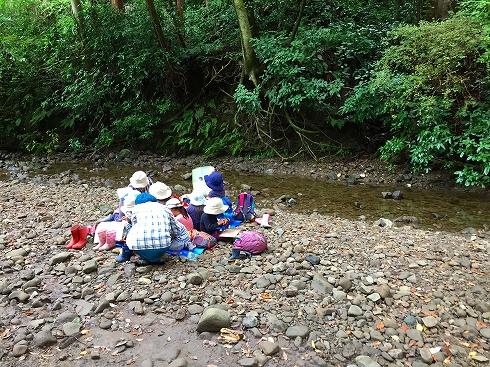 河原でピクニック