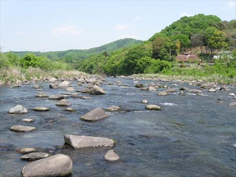 160501-104702-渡良瀬川2_R