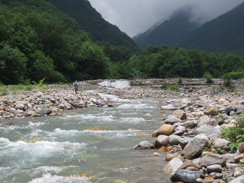 籠川下流部2