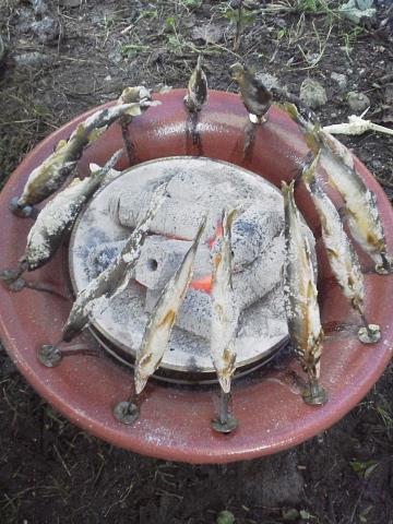 鮎+炭火焼き台