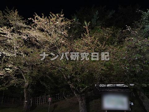 【リアルナンパ】 2016年も花見を狙う ep06(Final)