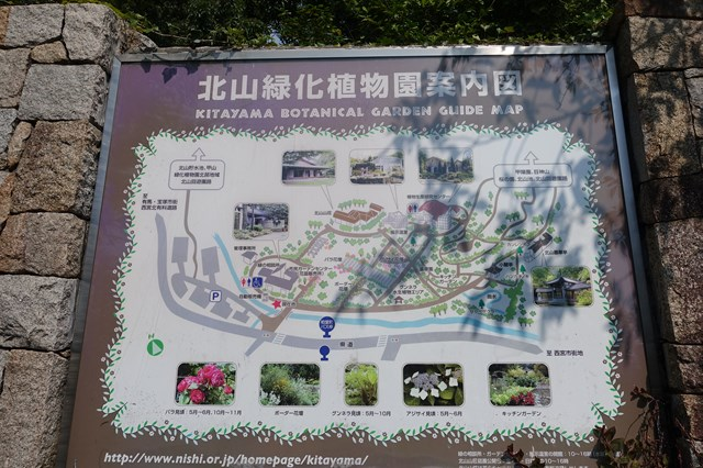 西宮 北山緑化植物園 (14)