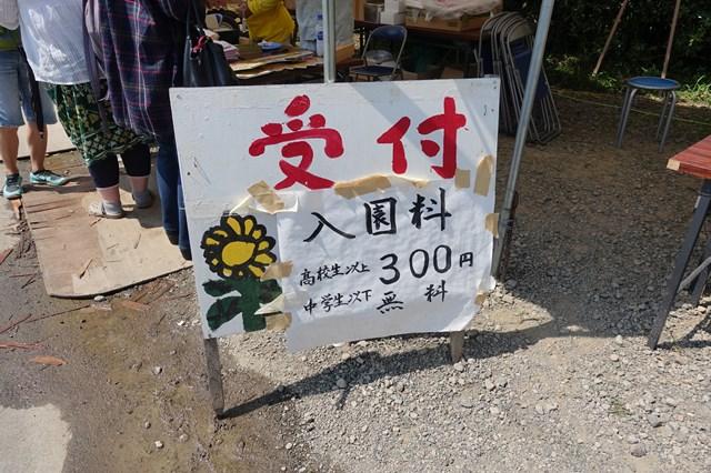 ひまわり遊柚農園(丹波市) (1)