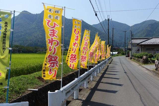 ひまわり遊柚農園(丹波市) (2)