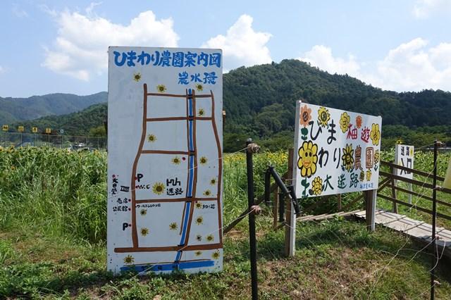 ひまわり遊柚農園(丹波市) (5)