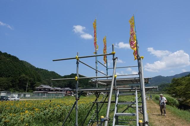 ひまわり遊柚農園(丹波市) (14)