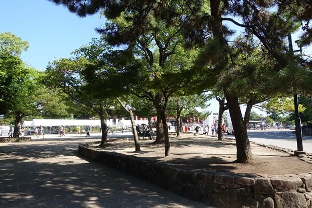 広島旅行7-1 宮島 (10)