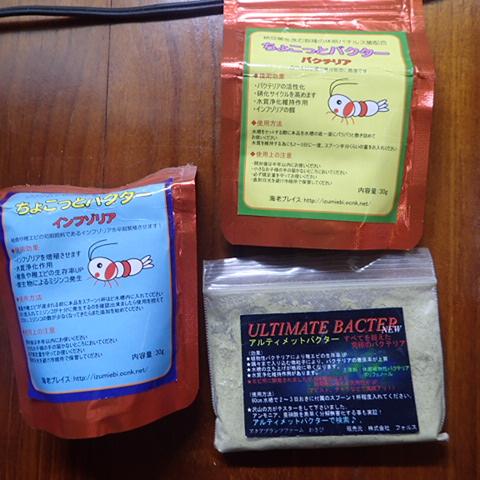 P8071968.jpg