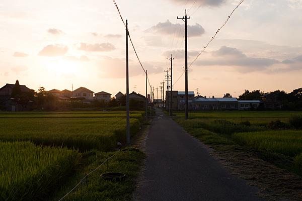 瀬戸の田んぼ夕暮れ