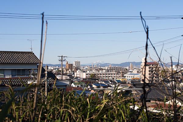 守山城跡からの眺め