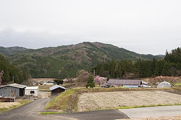 売木村風景