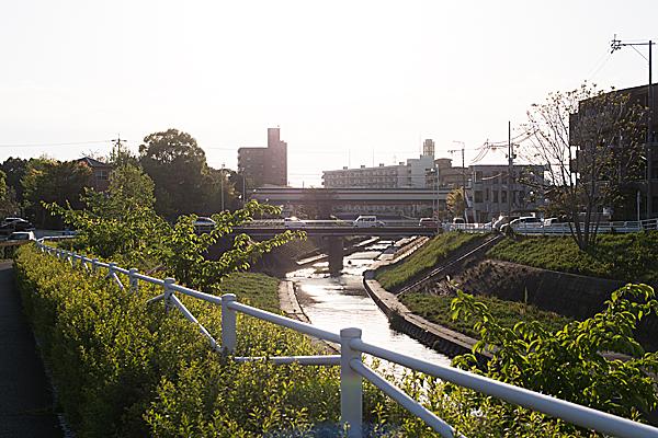 西日と香流川