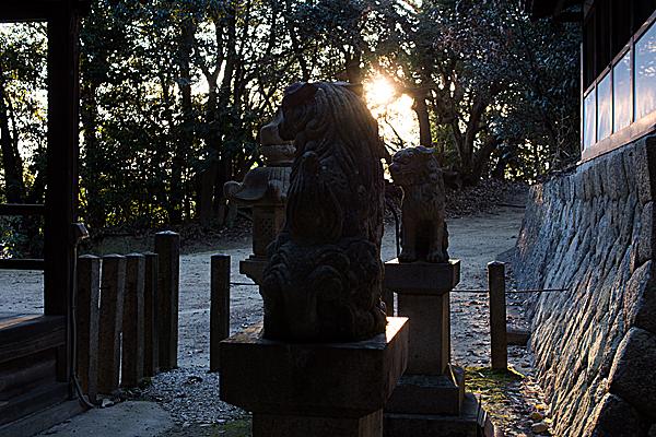 狛犬と西日