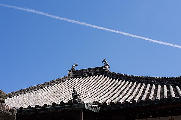 本堂の屋根と飛行機雲