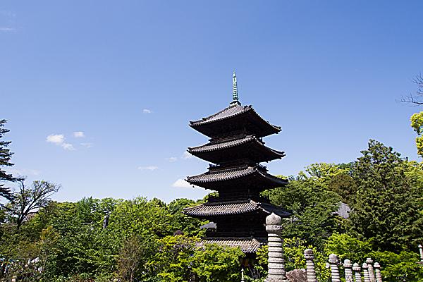 五重塔と新緑