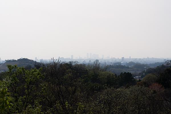 高台から見る名古屋方面