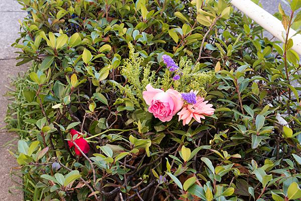 植え込みに造花
