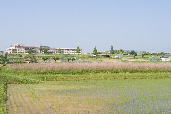 東小学校と田んぼ風景