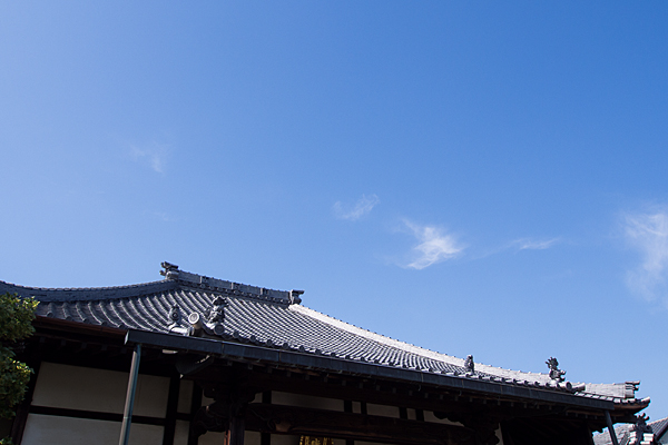 本堂の屋根と初夏の青空
