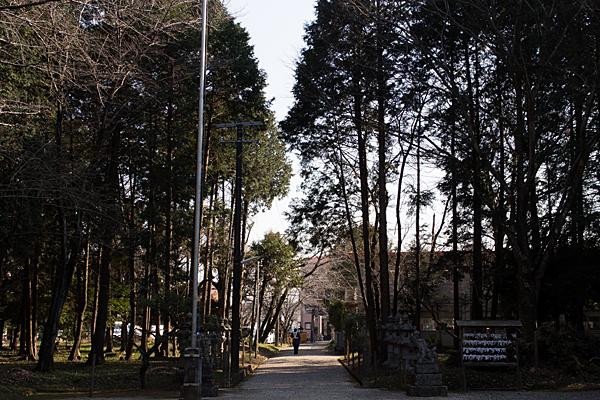 境内と参道の風景