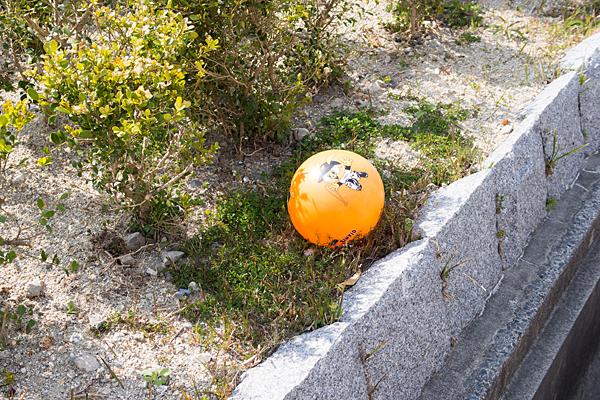 ジャビットプリントのボール