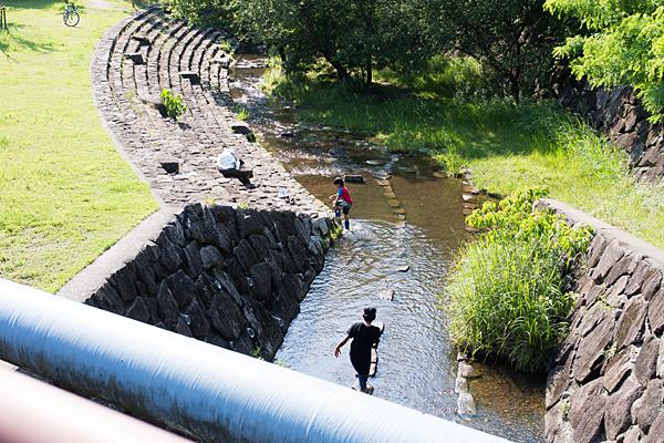 川遊びをする子供たち