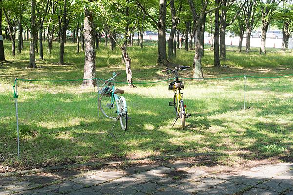 小幡緑地と少年自転車