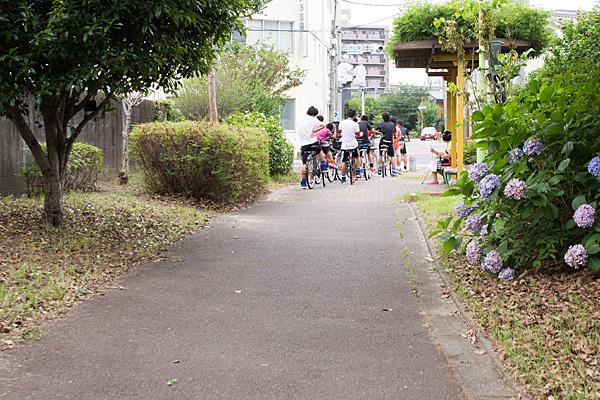 アジサイと自転車の少年たち